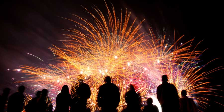 Fireworks and your dogs