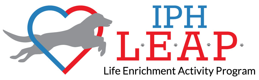 Life Enrichment Activity Program