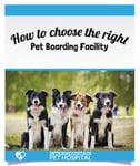 Choosing the right pet boarding facility