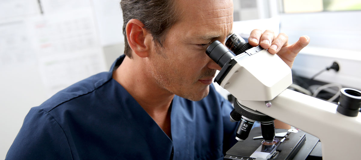 Lab Diagnostics for Pets