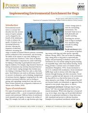 Pet Enrichment Study