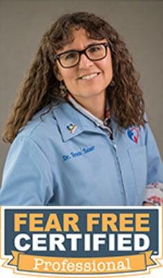 Dr. Teresa Sauer